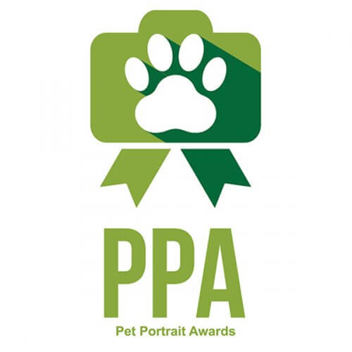 Pet portrait awards logo